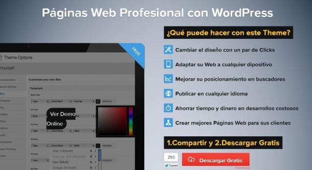 Tema profesional para WordPress personalizable
