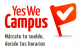 Ingresos adicionales para jóvenes estudiantes, YesWeCampus