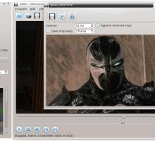 Crear gifs animados con vídeo: QGifer
