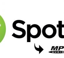 Cómo descargar música de Spotify
