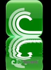 Agujero de seguridad en las VPN desvela IP de usuarios BitTorrent
