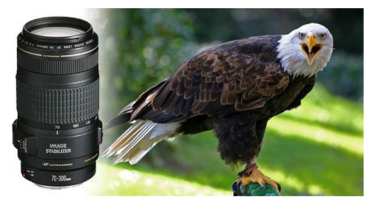 Curso de fotografía digital en PDF
