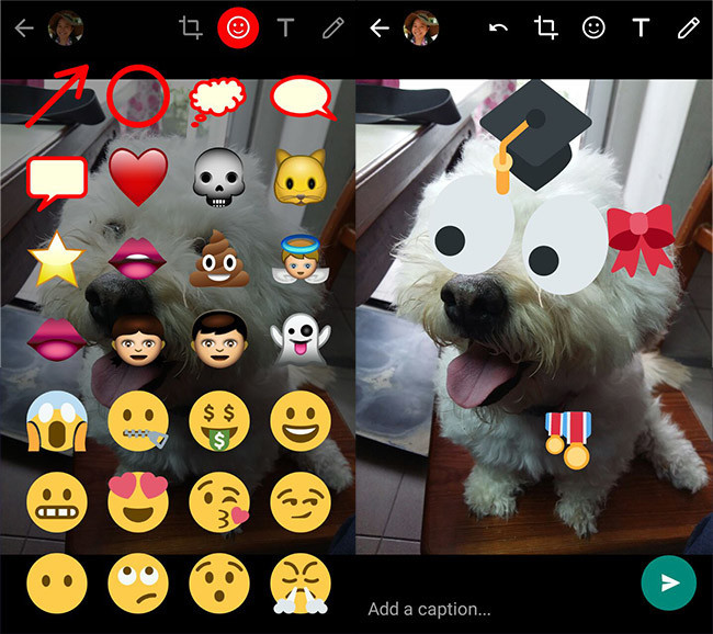 whatsapp-pegatinas-fotos